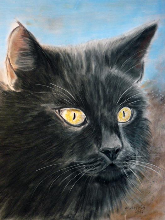 Katze Kreide auf Velourpapier