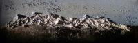 Berge Acryl auf Leinwand